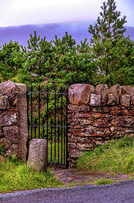 Photograph - Secret Wicket 1. Wicklow. Ireland by Jenny Rainbow