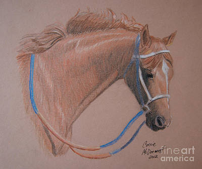 Race Horse Drawing - Secretariat by Corrie McDermott