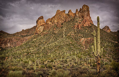 Photograph - Secrets Of The Superstitions  by Saija Lehtonen