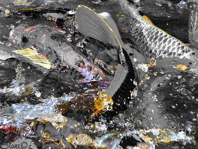 Photograph - Secrets Of The Wild Koi 3 by September  Stone