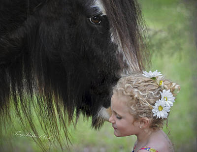 Gypsy Horses Photograph - Secrets by Terry Kirkland Cook