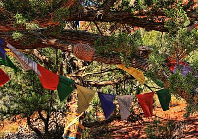 Photograph - Sedona # 26 - Amitabha Stupa And Peace Park by Allen Beatty