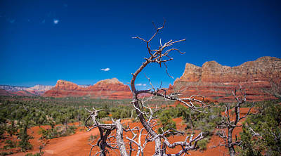 Photograph - Sedona Blue by Robert McKay Jones