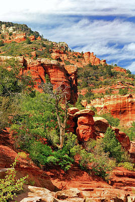 Photograph - Sedona I by Ron Cline