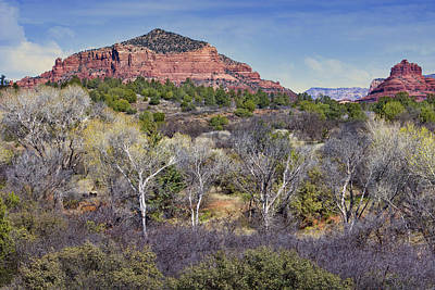 Sedona Landscape - 2 - Arizona Print by Nikolyn McDonald
