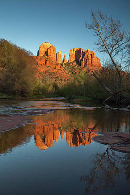 Photograph - Sedona Light by Darren White