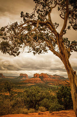 Photograph - Sedona Overlook by Don Schwartz