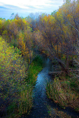 Photograph - Sedona Stream by Martin Sullivan