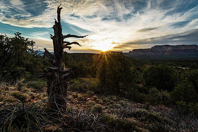 Photograph - Sedona Sunset by Rick Strobaugh