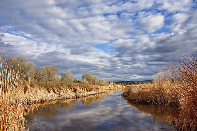 Photograph - Sedona Wetlands by Leda Robertson