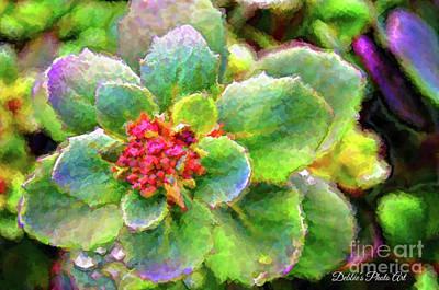 Photograph - Sedum Digital Effect by Debbie Portwood