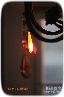 Photograph - See The Light by Donna L Munro
