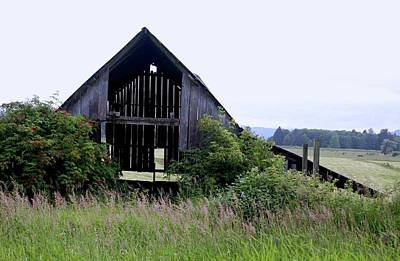 Photograph - See Through Barn by Craig Strand