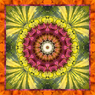 Chakra Rainbow Photograph - Seed Center by Bell And Todd
