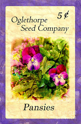 Photograph - Seed Packet -- Pansies by Judi Bagwell