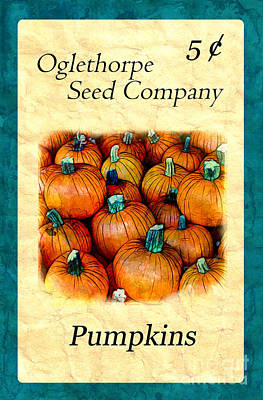 Photograph - Seed Packet -- Pumpkins by Judi Bagwell