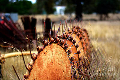 Photograph - Seed Spreader by Stuart Row