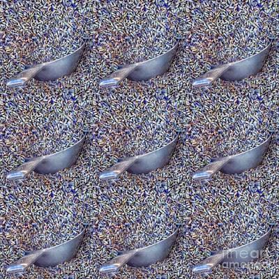 Queen - Seeing Lavender by Susan Garren