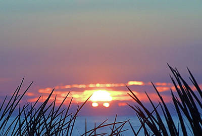 Photograph - Seeing Sun by Newwwman