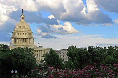 Photograph - Seeing The United States Capitol Through Flowers And Trees by Cora Wandel