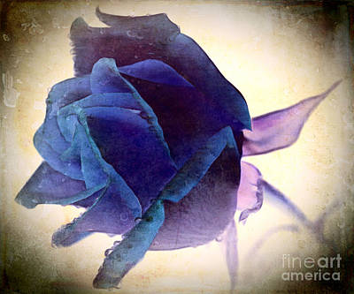 Abstract Rose Digital Art - Seems Like Yesterday by Krissy Katsimbras