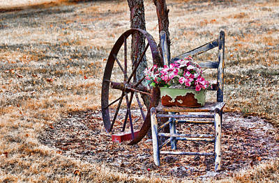 Photograph - Seen Better Days by Fran Riley
