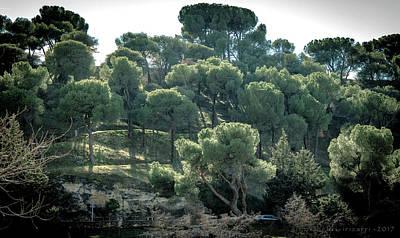 Photograph - Segovia Hillside by Henri Irizarri