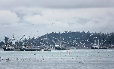 Photograph - Seiners In The Bay by Randy Hall
