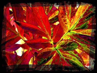Digital Art - Select Peony Leaves by Will Borden