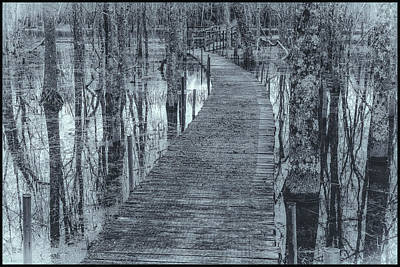 Photograph - Selenium Boardwalk  by David Heilman