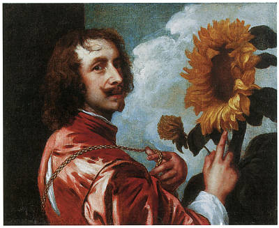 Artist Self Portrait Painting - Self-portrait With A Sunflower by Anthony Van Dyck