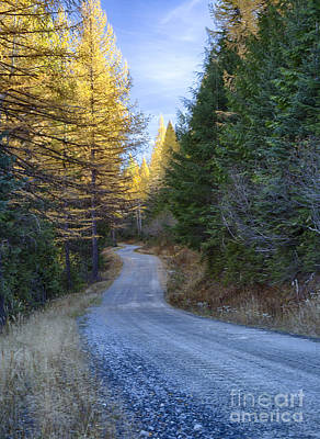 Photograph - Selkirk Journey by Idaho Scenic Images Linda Lantzy