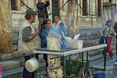 Photograph - Selling And Roasting Chestnuts by Patricia Hofmeester