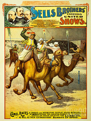 Sells Brothers' Circus Poster 2-2 Original by MMG Archives