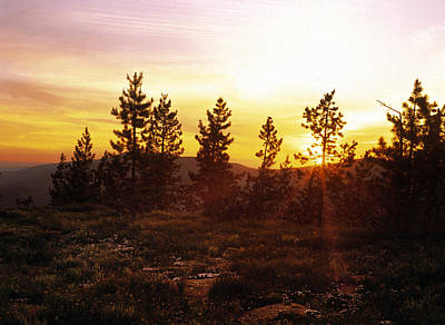 Photograph - Selway Wilderness by Leland D Howard