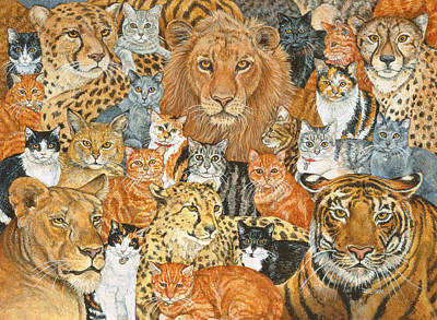 Semi Wild Cat Spread Art Print