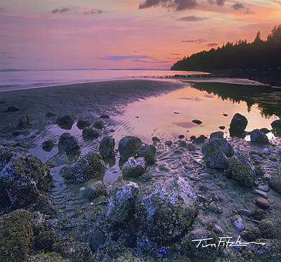 Semiahmoo Bay Art Print by Tim Fitzharris
