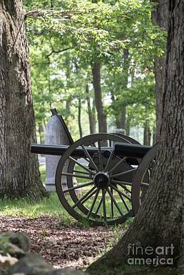 Photograph - Seminary Ridge Cannon by David Bearden