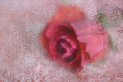 Photograph - Send With Love 2 by Diane Alexander
