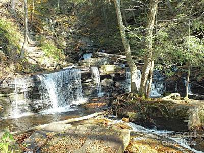 Keith Richards - Delaware Falls 2 - Ricketts Glen by Cindy Treger