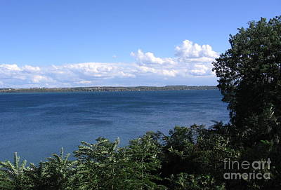 Photograph - Seneca Lake Finger Lakes New York by Rose Santuci-Sofranko