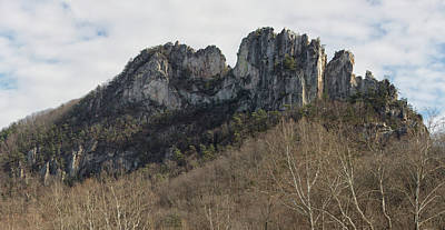Photograph - Seneca Rocks by Jack Nevitt
