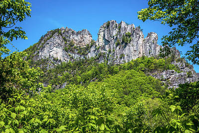 Photograph - Seneca Rocks by Susie Weaver