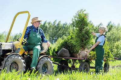 Retirement Photograph - Senior Man In Tractor Working With Woman Gardener On Trees Raising Farm by Michal Bednarek
