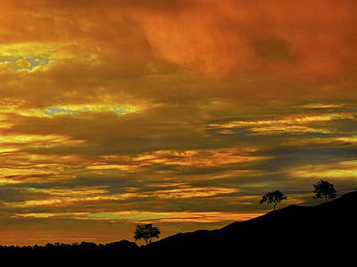 Photograph - Sensational Sunrise by Mark Blauhoefer