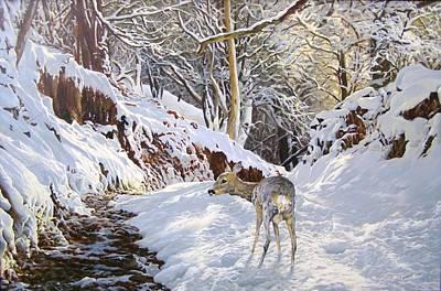 Sentier Des Biches Art Print by Julian Wheat