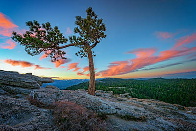 Photograph - Sentinel Dawn by Rick Berk