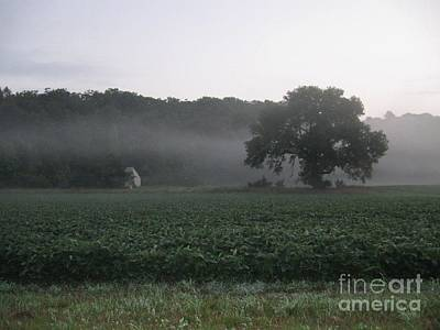 Photograph - Sentinel For A Beanfield by Dan De Ment