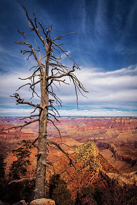 Photograph - Sentinel Over  The Canyon by Andrew Soundarajan