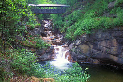 Photograph - Sentinel Pine Bridge Flume Gorge by John Burk